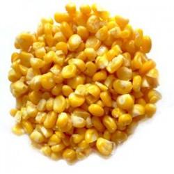 Maïs pop corn France