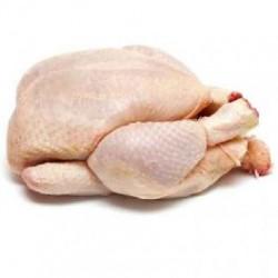 Poulet entier Prêt à cuire